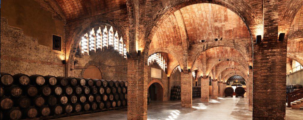 Wine cellar visit, Penedès area